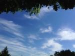 いい天気♪