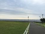 浦安市総合公園から海