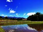 田植え/八ヶ岳